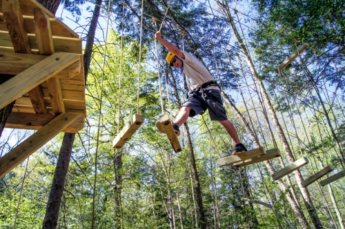 Treetop adventure areas, eco challenge courses, nature play areas and community gardens are some of the preliminary concepts for additional attractions at Grant's Farm allowing more people to connect with nature.Stock photo