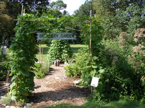 Photos provided by Jan Oberkramer, The Green Center.