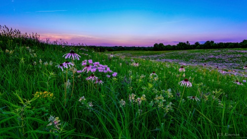 Lindens Prairie RSKinerson