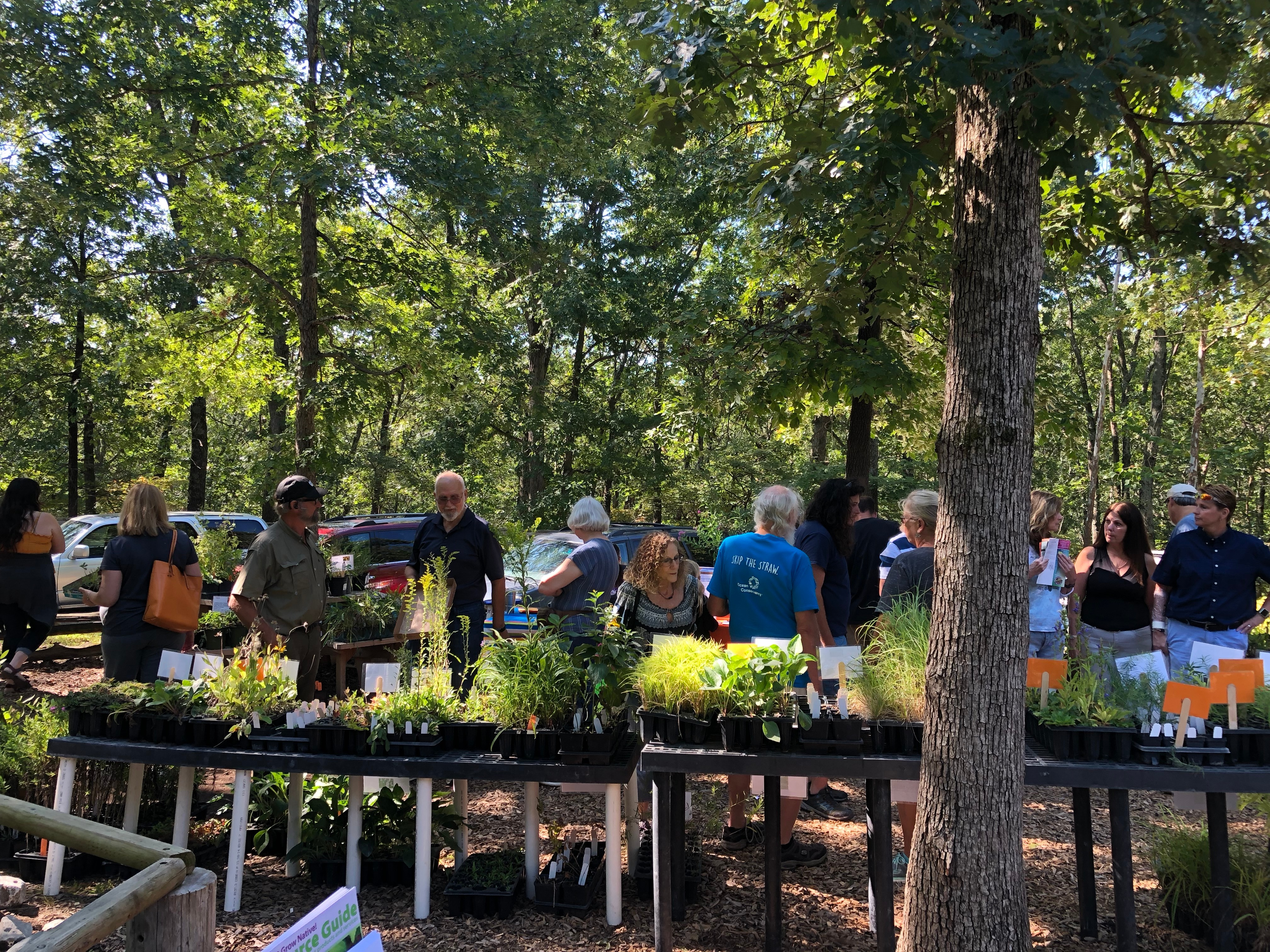 WBS Plant Sale by Felicia Brundick